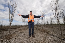 man posing at the center of trees newly planted